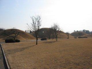Korea035_l