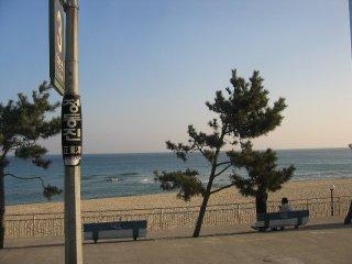 Korea062_l