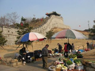 Korea123_l