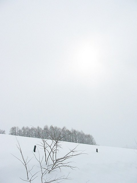 Biei_winter_02
