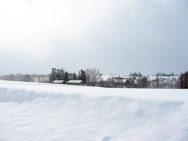 Biei_winter_05
