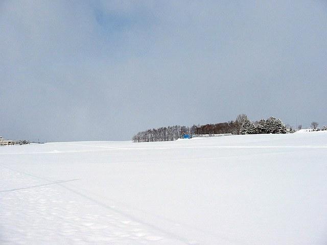 Biei_winter_09
