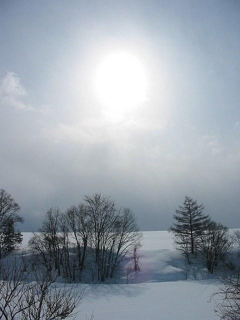 Biei_winter_12