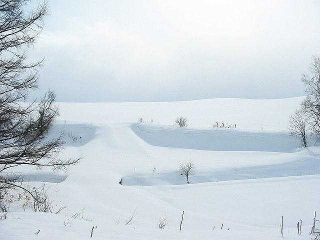 Biei_winter_13