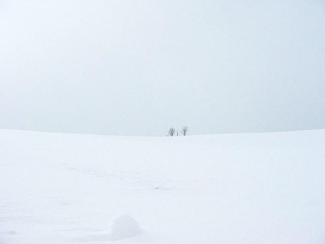 Biei_winter_15