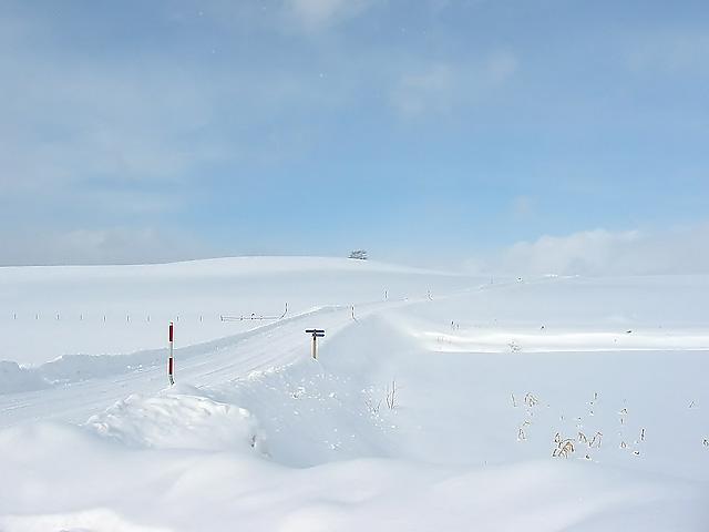 Biei_winter_18