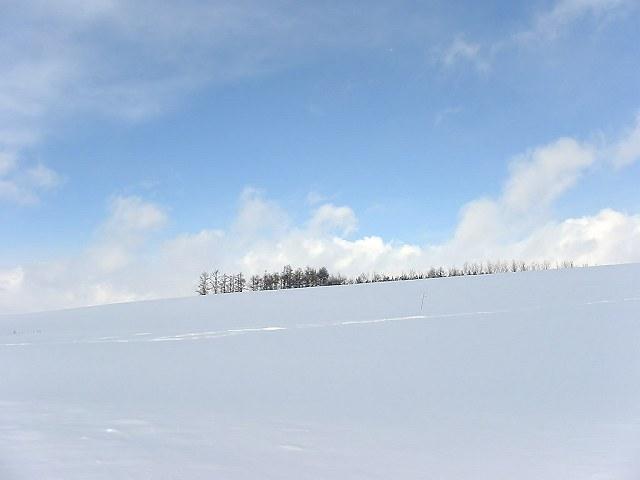 Biei_winter_22