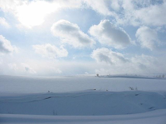 Biei_winter_23