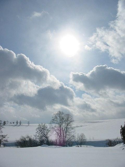 Biei_winter_26