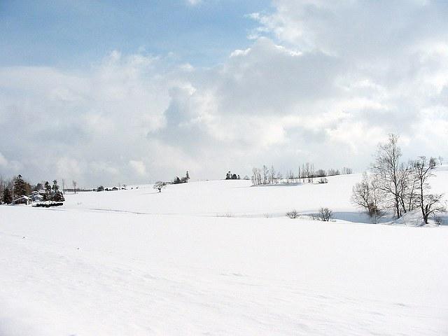 Biei_winter_28