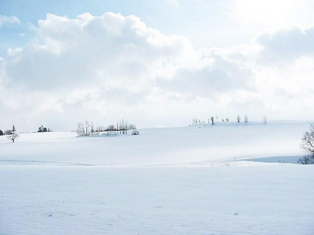 Biei_winter_29
