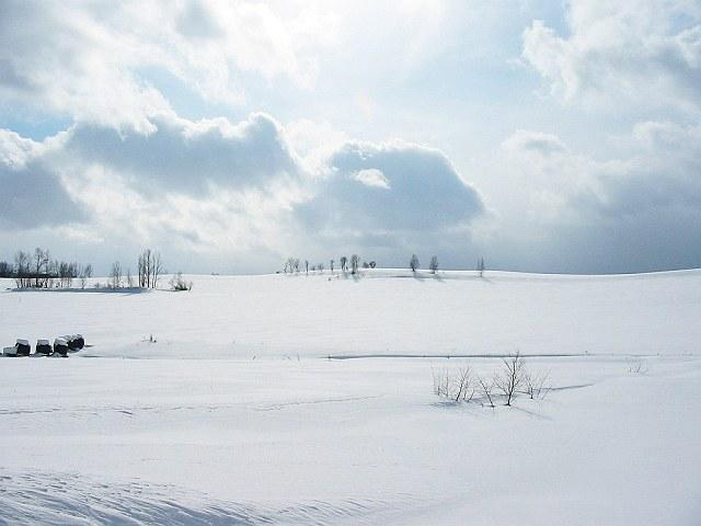 Biei_winter_30