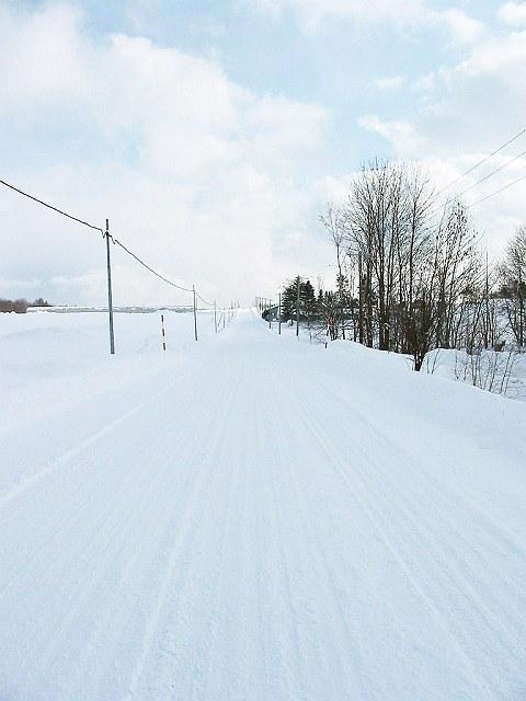 Biei_winter_31