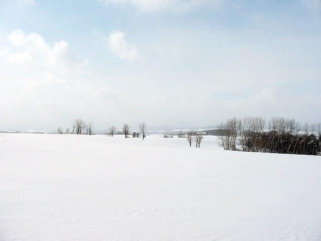 Biei_winter_34