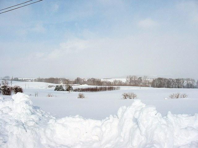 Biei_winter_35