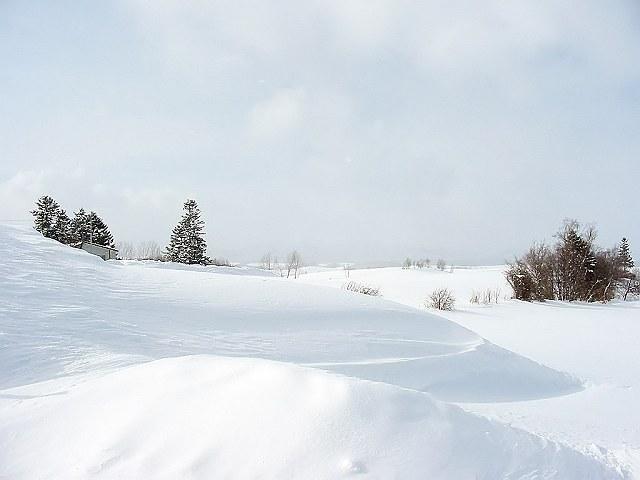 Biei_winter_36