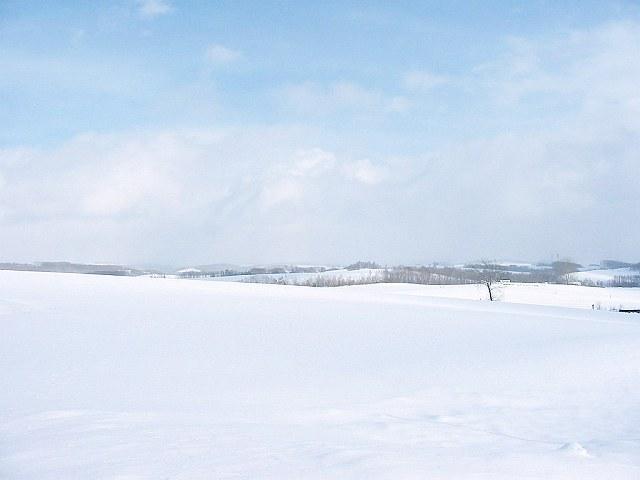 Biei_winter_38