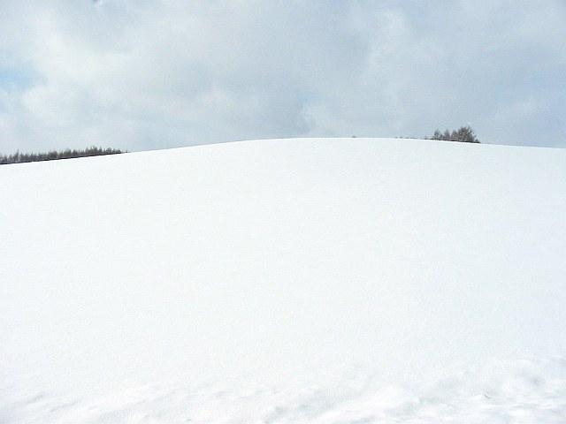 Biei_winter_40