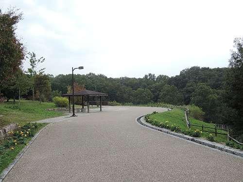 Umami_hills_park_104