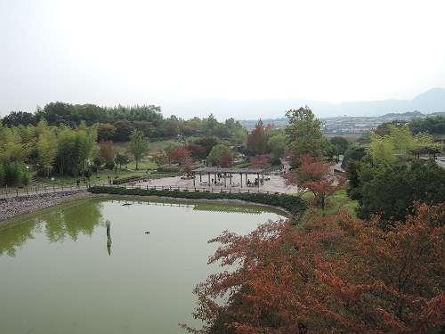 Umami_hills_park_204