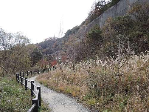 Dam_hike_201405_304