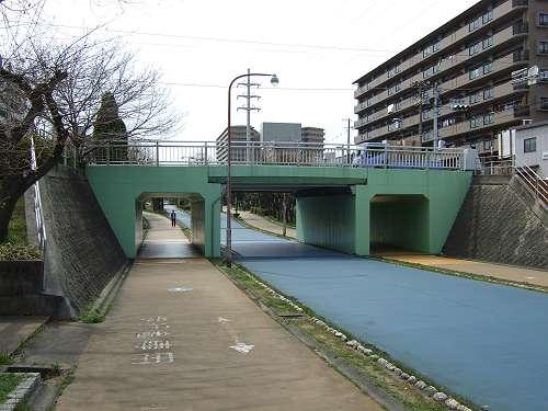 Ohnogawa_110