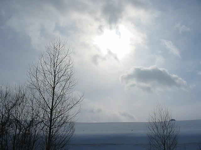 Biei_winter_21