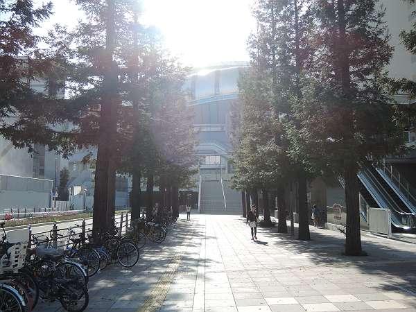 Namba_line_ground_214