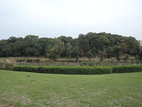 Umami_hills_park_207
