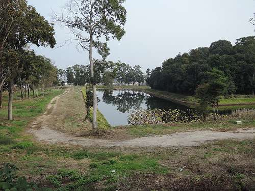 Umami_hills_park_208