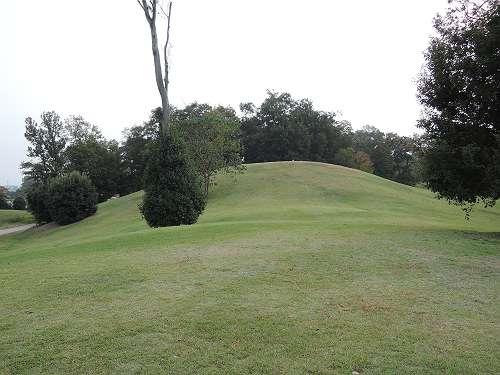 Umami_hills_park_308