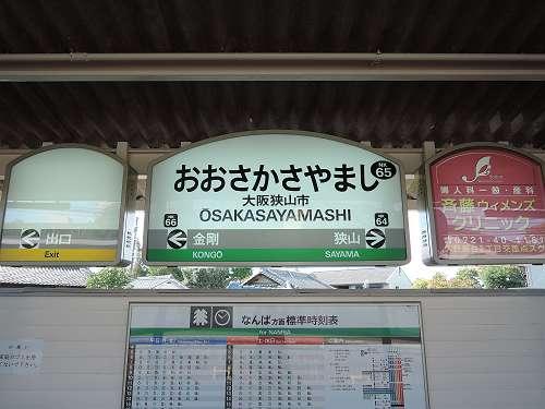 Sayamaike_02