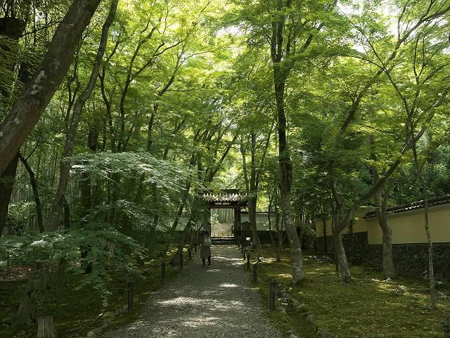 Arashiyama2005_021