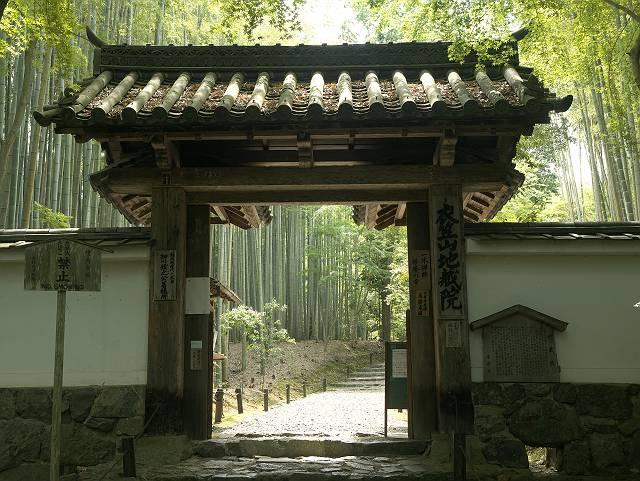Arashiyama2005_025