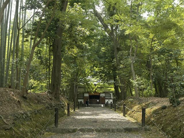 Arashiyama2005_027