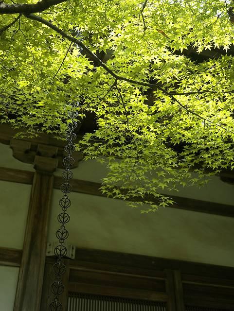 Arashiyama2005_030