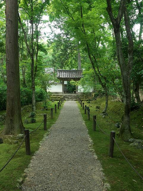 Arashiyama2005_034