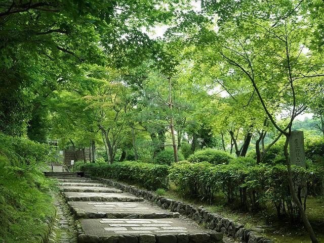 Arashiyama2005_055