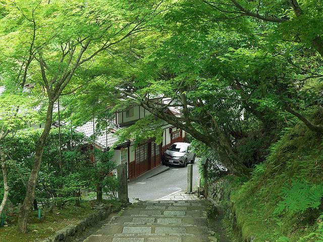 Arashiyama2005_056