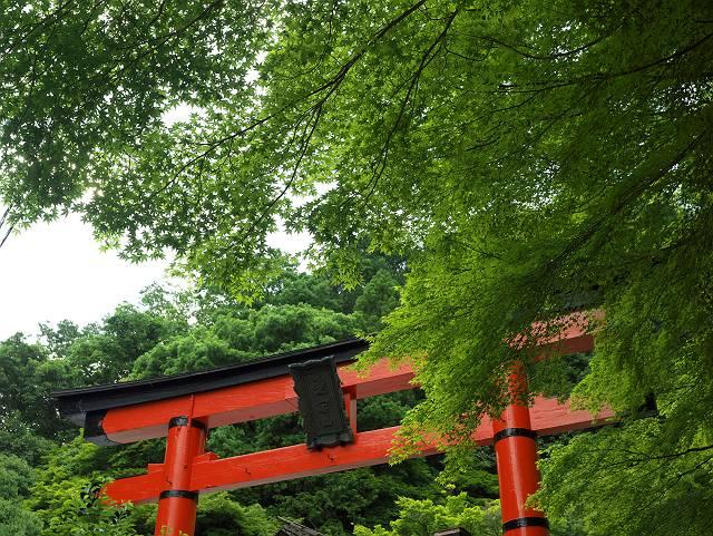 Arashiyama2005_058b
