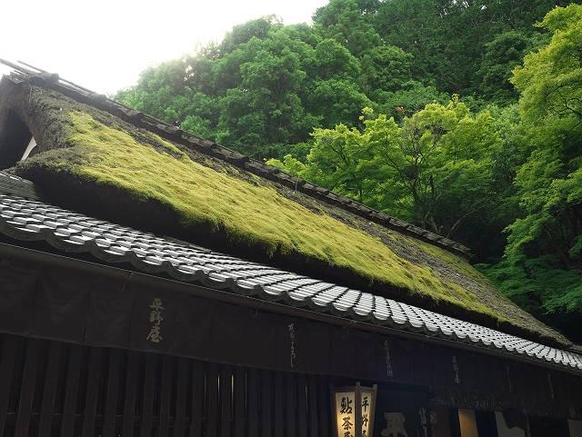 Arashiyama2005_059