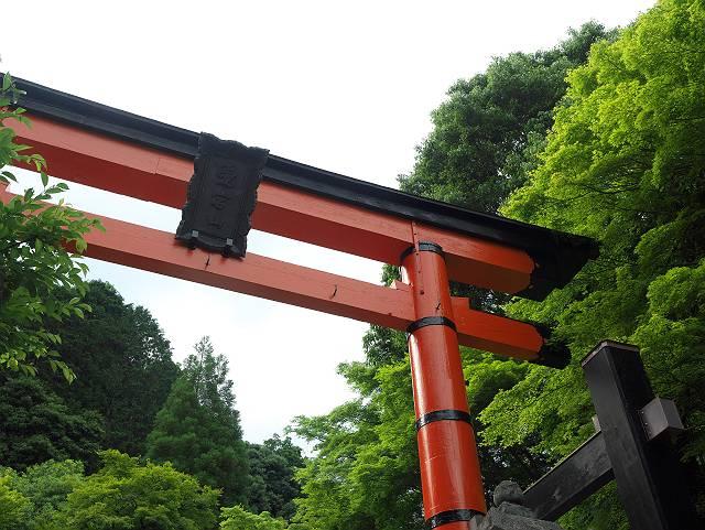 Arashiyama2005_060