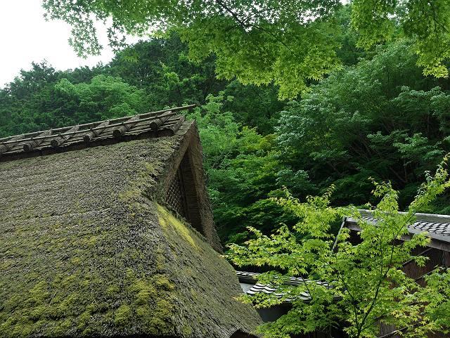 Arashiyama2005_061