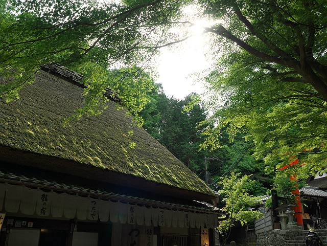 Arashiyama2005_061b